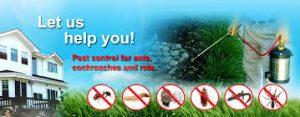 Pest Control Kuala Lumpur